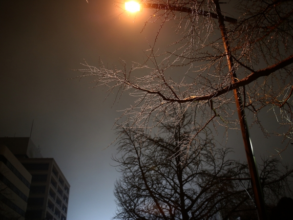 yokohama-night 02 (1)
