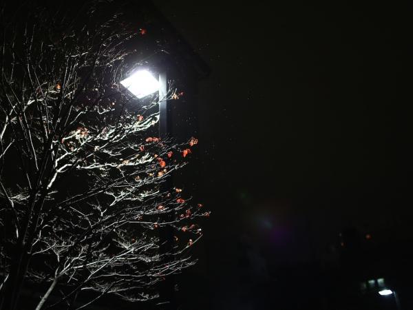 yokohama-night 04